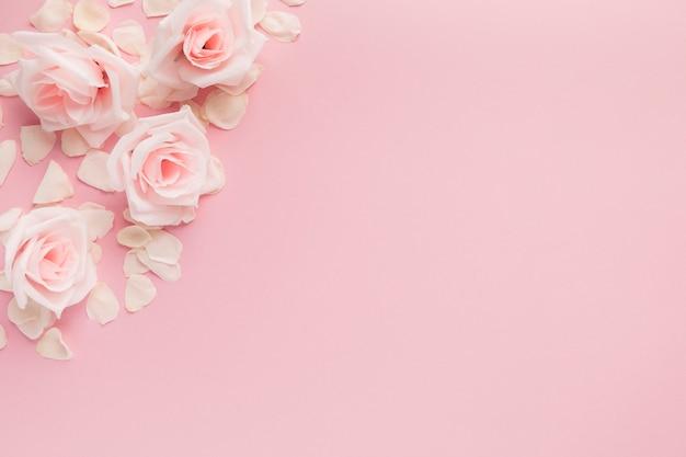 Płaski układ pięknych kwiatów