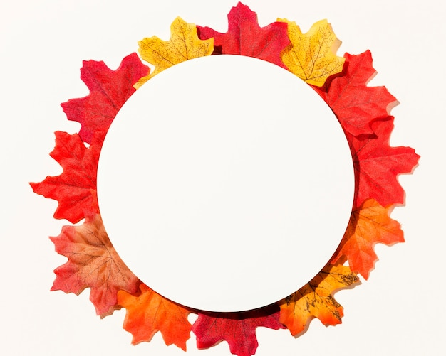 Płaski układ różnych jesiennych liści z papierowym kółkiem