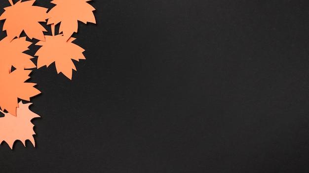 Płaskie leżał papier jesień liście asortyment z miejsca kopiowania