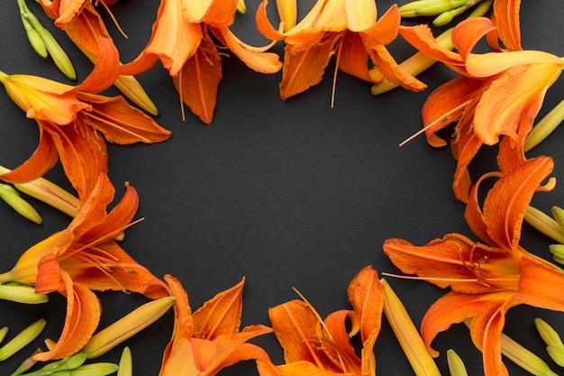 Płaskie leżały pomarańczowe ramki lilii