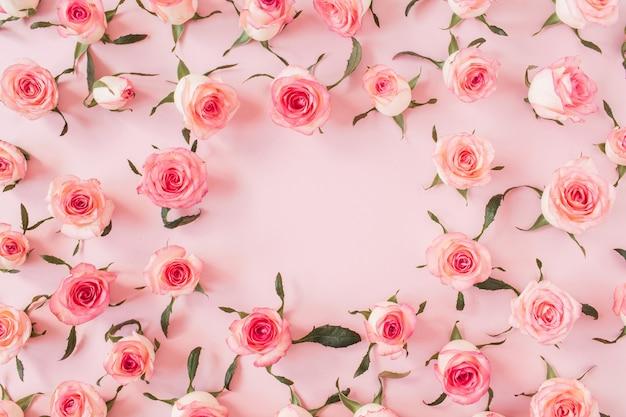 Płaskie obramowanie ramki z pustą makietą przestrzeni kopii wykonanej z różowych pąków kwiatowych róży na różowej powierzchni