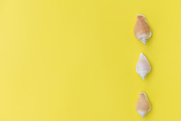Płaskie świeckich gwiazda ryb na żółtym tle, widok z góry