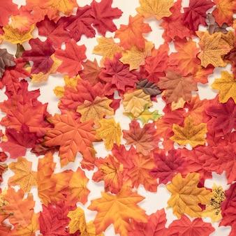 Płaskie świeckie jesienne kolorowe liście