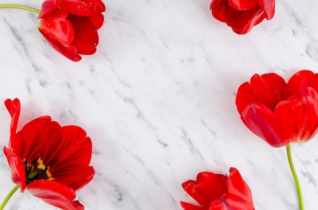 Płaskie ukształtowanie czerwonych kwiatów