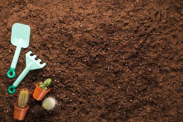Płaskie ukształtowanie narzędzi kaktusowych i ogrodniczych z copyspace