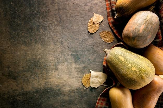 Płaskie ukształtowanie różnych jesiennych squasha z miejscem na kopię