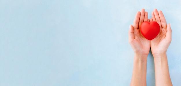 Płaskie ułożenie rąk trzymających kształt serca z ostrożnością i miejsca na kopię