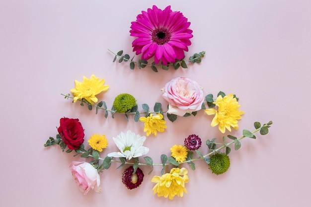 Płaskie ułożenie wspaniałej kompozycji kwiatów