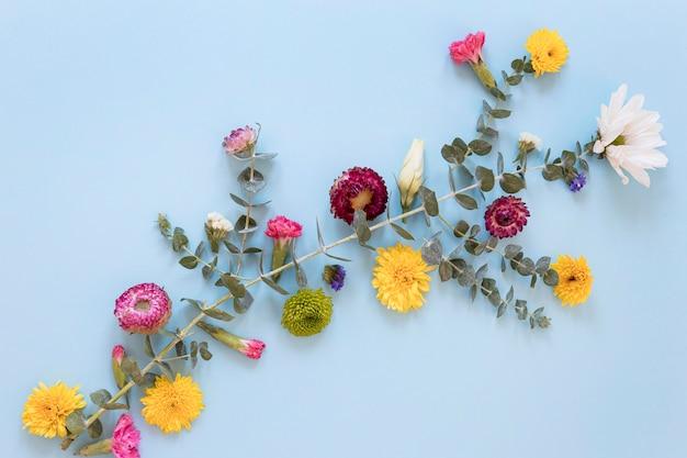 Płaskie ułożenie wspaniałych aranżacji kwiatów