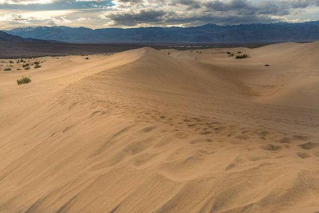 Płaskie wydmy mesquite, park narodowy doliny śmierci
