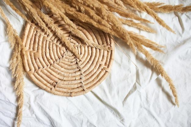 Płasko ułożona beżowa trzcina trawa pampasowa na białym obrusie tekstylnym
