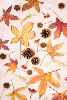 Płasko ułożone jesienne liście z szyszkami