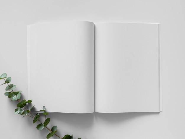 Płasko ułożone naturalne liście i biały układ czasopism