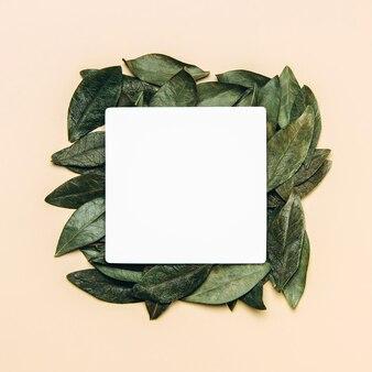 Płasko ułożony biały blank z zielonymi naturalnymi liśćmi.