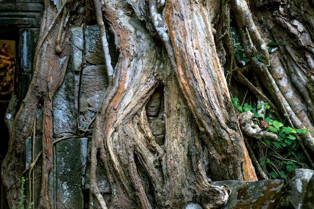 Płaskorzeźba statua kultury khmerów w angkor wat w kambodży.