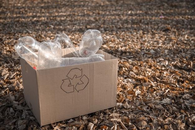 Plastikowa butelka, śmieci są zbierane w skrzynce do przetwarzania odpadów na podwórku