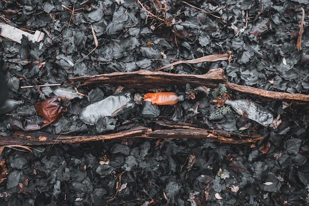 Plastikowe butelki na śmieci na starym drzewie leżącym w liściach problem ekologiczny środowisko odpady z tworzyw sztucznych