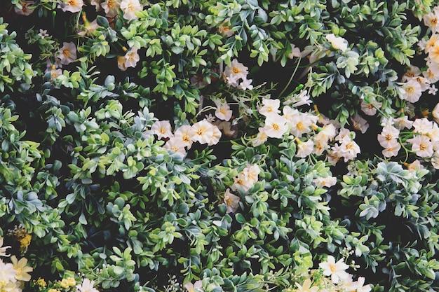 Plastikowe kwiaty i liście dekorują