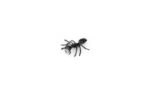 Plastikowe zabawki owad - czarna mrówka, na białym tle, z bliska.