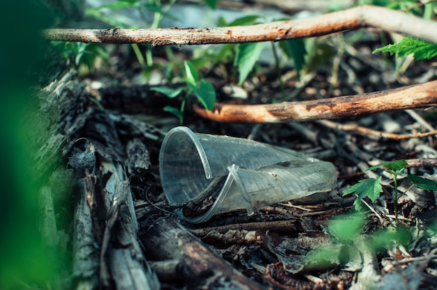 Plastikowy kubek i śmieci w lesie. zanieczyszczenie środowiska. problem środowiskowy i katastrofa.