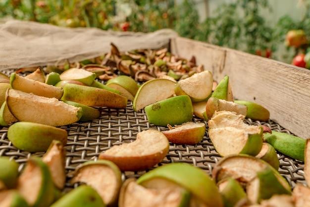 Plastry jabłek i gruszek są suszone na siatce produkcja suszonych owoców zbiór owoców