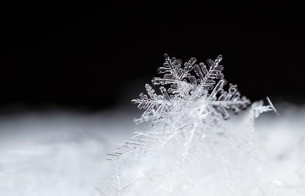 Płatek śniegu na naturalnej zaspie z bliska boże narodzenie i zima w tle