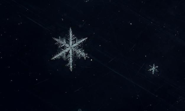 Płatek śniegu podczas opadów śniegu
