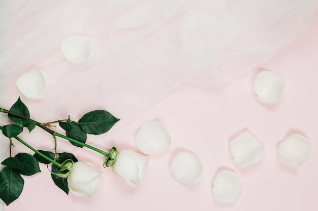 Płatki białych róż z welonem ślubnym
