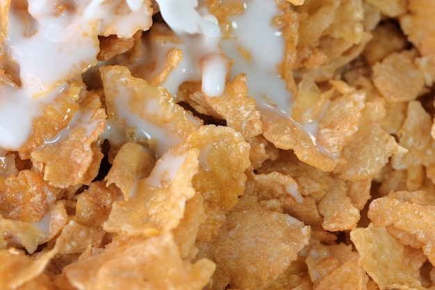 Płatki kukurydziane z lukrem cukrowym z mlekiem na śniadanie z bliska fotografia makro