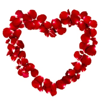Płatki róż ułożone w kształcie serca na białym tle.