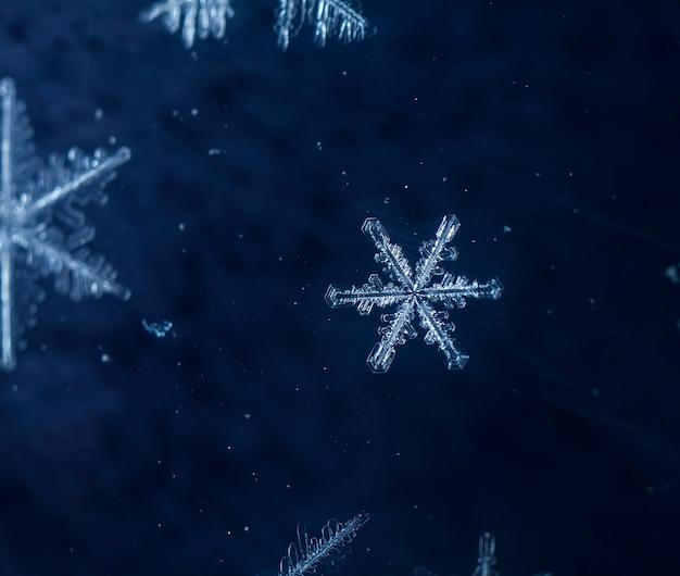 Płatki śniegu podczas opadów śniegu
