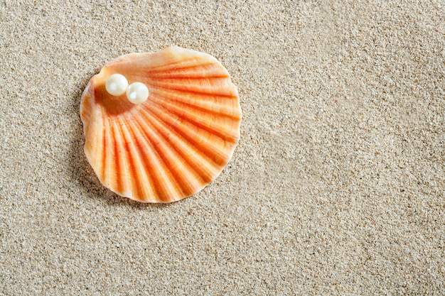 Plaża biały piasek perła muszla małż makro