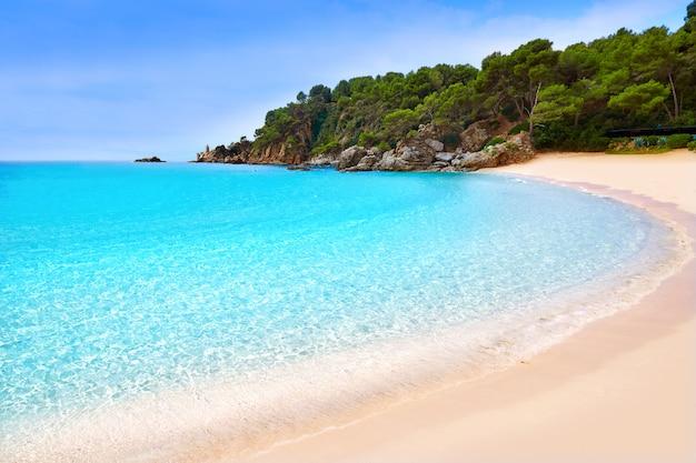 Plaża cala treumal lloret de mar costa brava