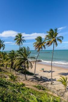 Plaża carapibus w pobliżu joao pessoa paraiba brazylia 13 czerwca 2021 r. północno-wschodnie wybrzeże brazylijskie