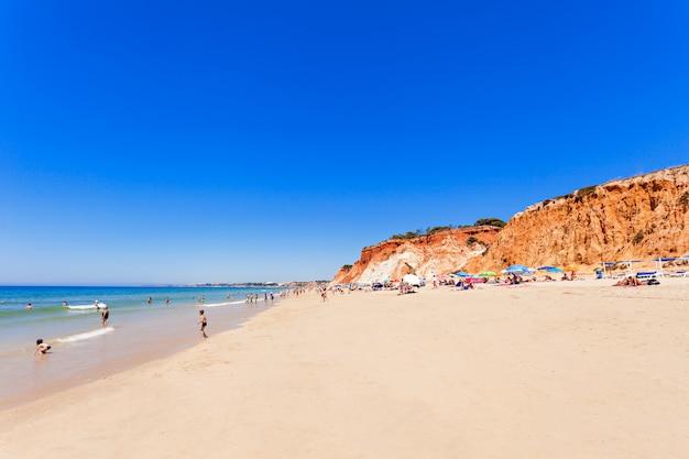 Plaża falesia