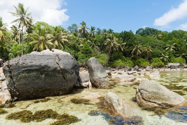 Plaża i odpływ