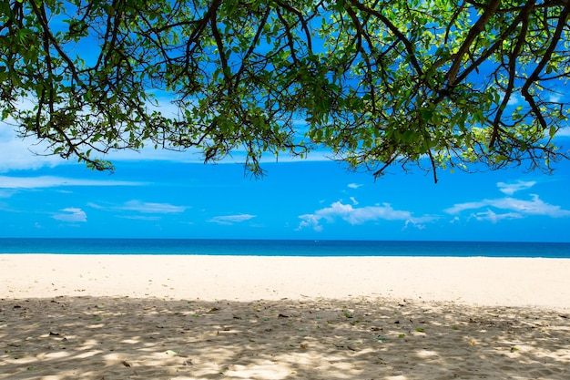 Plaża i tropikalne morze?