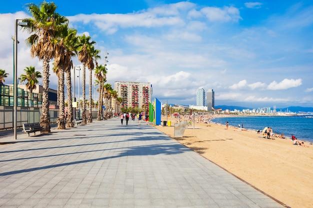 Plaża miejska playa de la barceloneta w centrum barcelony, region katalonia w hiszpanii