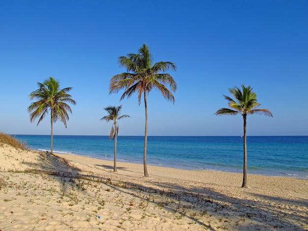 Plaża morze karaibskie na hawańskim, kuba