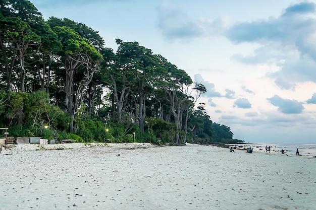 Plaża neil island i błękitne niebo z białymi chmurami, wyspy andamańskie - indie