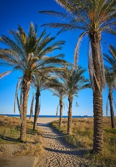 Plaża playa el pinar w grao de castellon