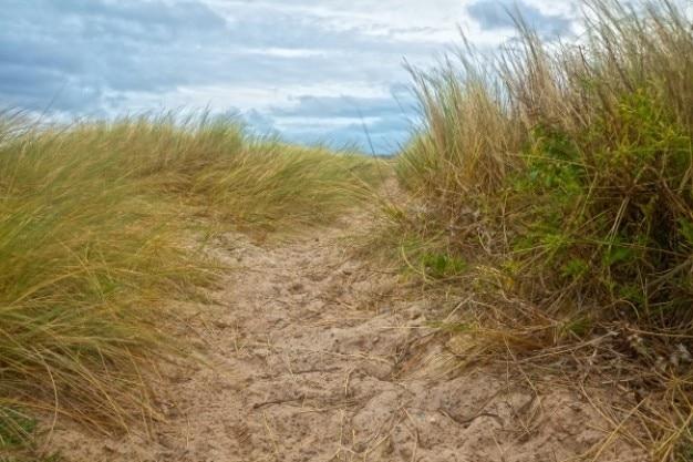 Plaża szlak hdr