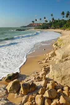 Plaża tabatinga conde paraiba brazylia 15 września 2010 r. wybrzeże północno-wschodniej brazylii