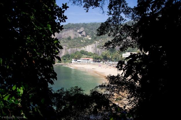Plaża urca i zielone liście w rio de janeiro