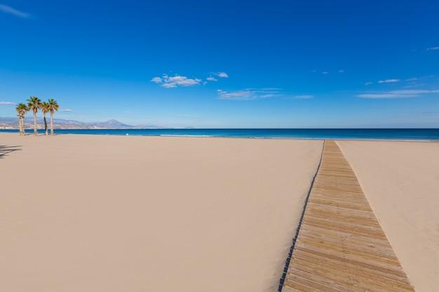 Plaża w alicante san juan z drzewami palmowymi morza śródziemnego