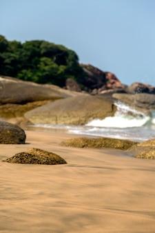 Plaża w anjuna, goa, indie