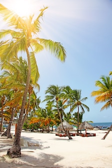 Plaża z białym piaskiem, słońcem i spokojnym oceanem. tropikalny transparent.