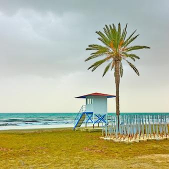 Plaża z palmą i wieżą ratowniczą poza sezonem, larnaka, cypr