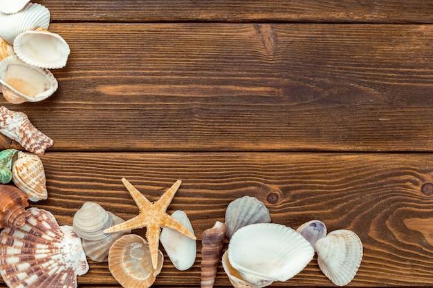Plażowe skorupy i kamienie na drewnianej desce