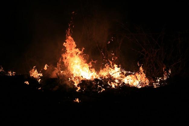 Płomienie ognia spalające suchą trawę na ciemnym tle.